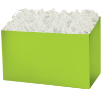Lime Green solid - Large Box