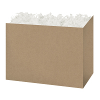 Kraft Solid - Large Box