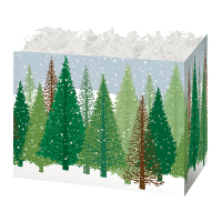 Winter Forest  - Small Box