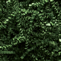 Spring-Fill crinkle Cut 10 lb. - Forest Green