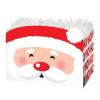 Santa- Large Box