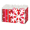 Bold Snowflake - Large Box