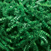 Spring-Fill crinkle Cut 10 lb. - Green
