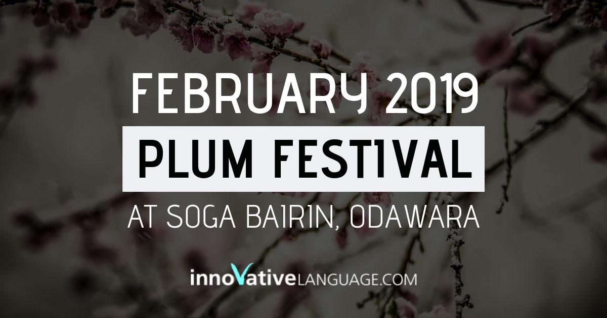 Plum Festival in Japan