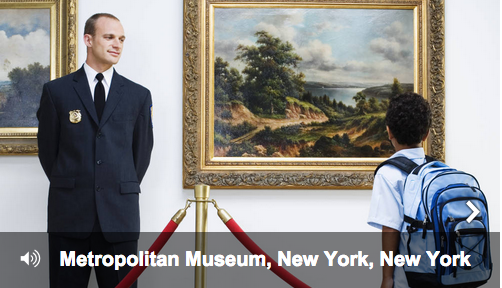 Have you visited the Metropolitan Museum in New York?