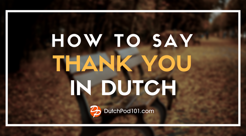 How to Say Thank You in Dutch - DutchPod101