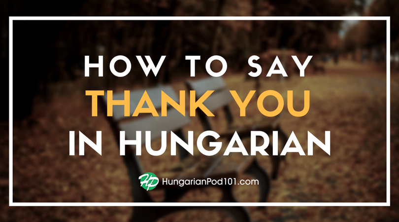 How to Say Thank You in Hungarian