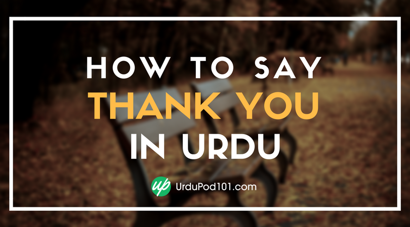 How To Say Thank You In Urdu Urdupod101