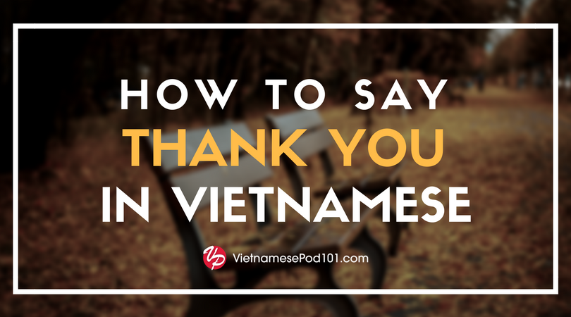 How to Say Thank You in Vietnamese