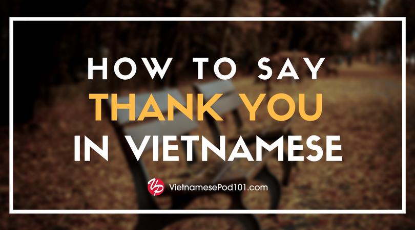 How to Say 'Merry Christmas' in Vietnamese- VietnamesePod101