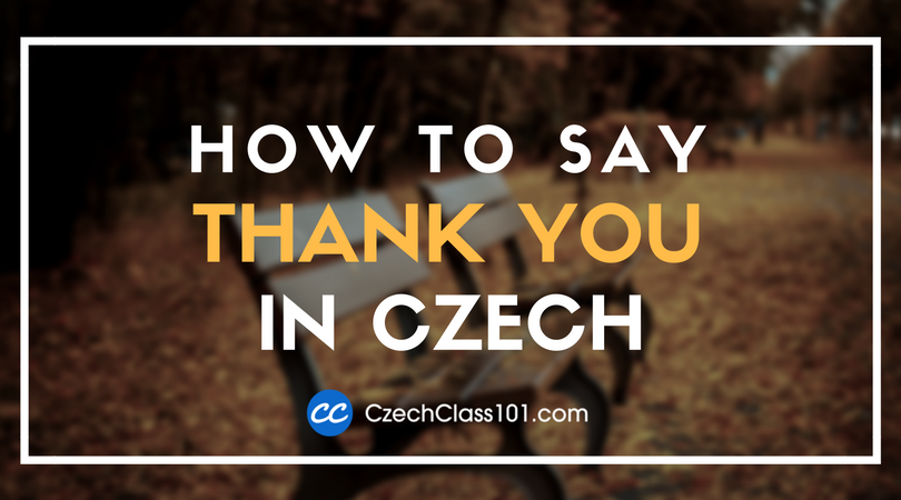 How to Say Thank You in Czech