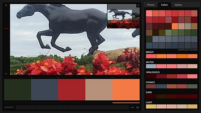 The Tame Flowers and Wild Horses Color Palette