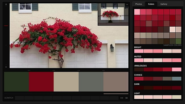 The Naples January Christmas Color Palette - red, green, grey, tan, yellow