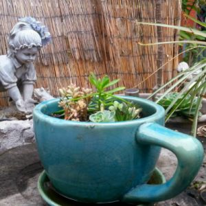 Giant coffee cup planter – discovered on the back porch at the Queen Bean coffee house, Modesto, CA