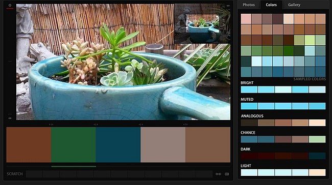Coffee Color Palette created via Color Copa - from the photo by Douglas Vos at the Queen Bean Coffee House