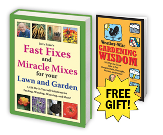 Fast Fixes & Miracle Mixes