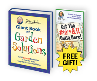 Giant Book of Garden Solutions