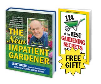 The New Impatient Gardener