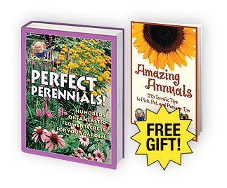 Perfect Perennials