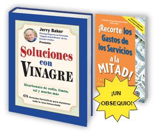 ¡Soluciones con Vinagre!