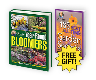 Year-Round Bloomers