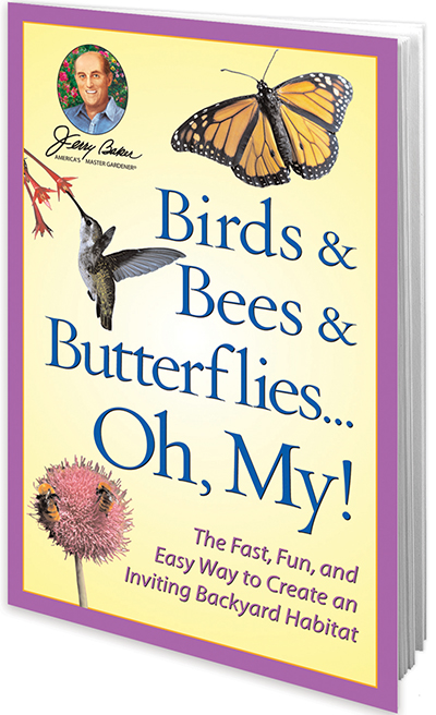 Birds & Bees & Butterflies...Oh, My!