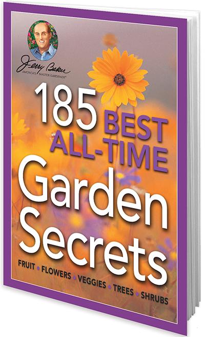 185 Best All-Time Garden Secrets