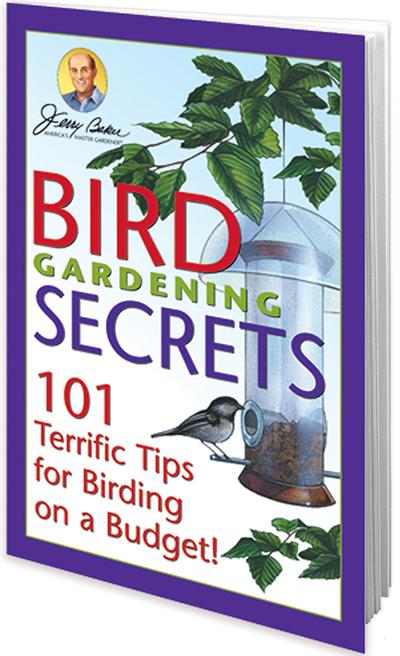 Bird Gardening Secrets