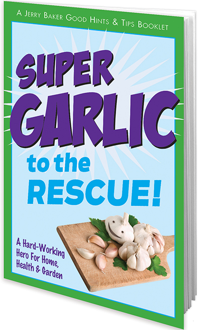 Super Garlic to the Rescue