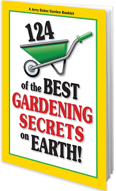124 of the Best Gardening Secrets on Earth
