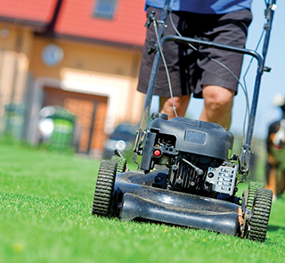 Stage a lawn-care intervention with these four fab fixes...