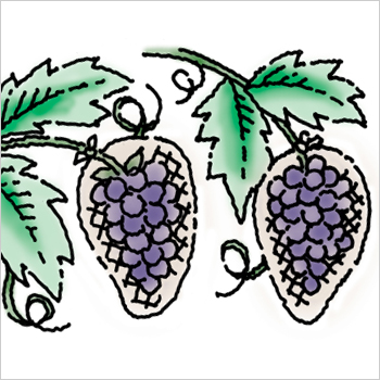 2. Grape expectations.
