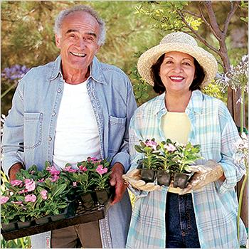 2. Support a mini-greenhouse.