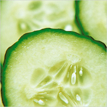 3. Condition with cukes.