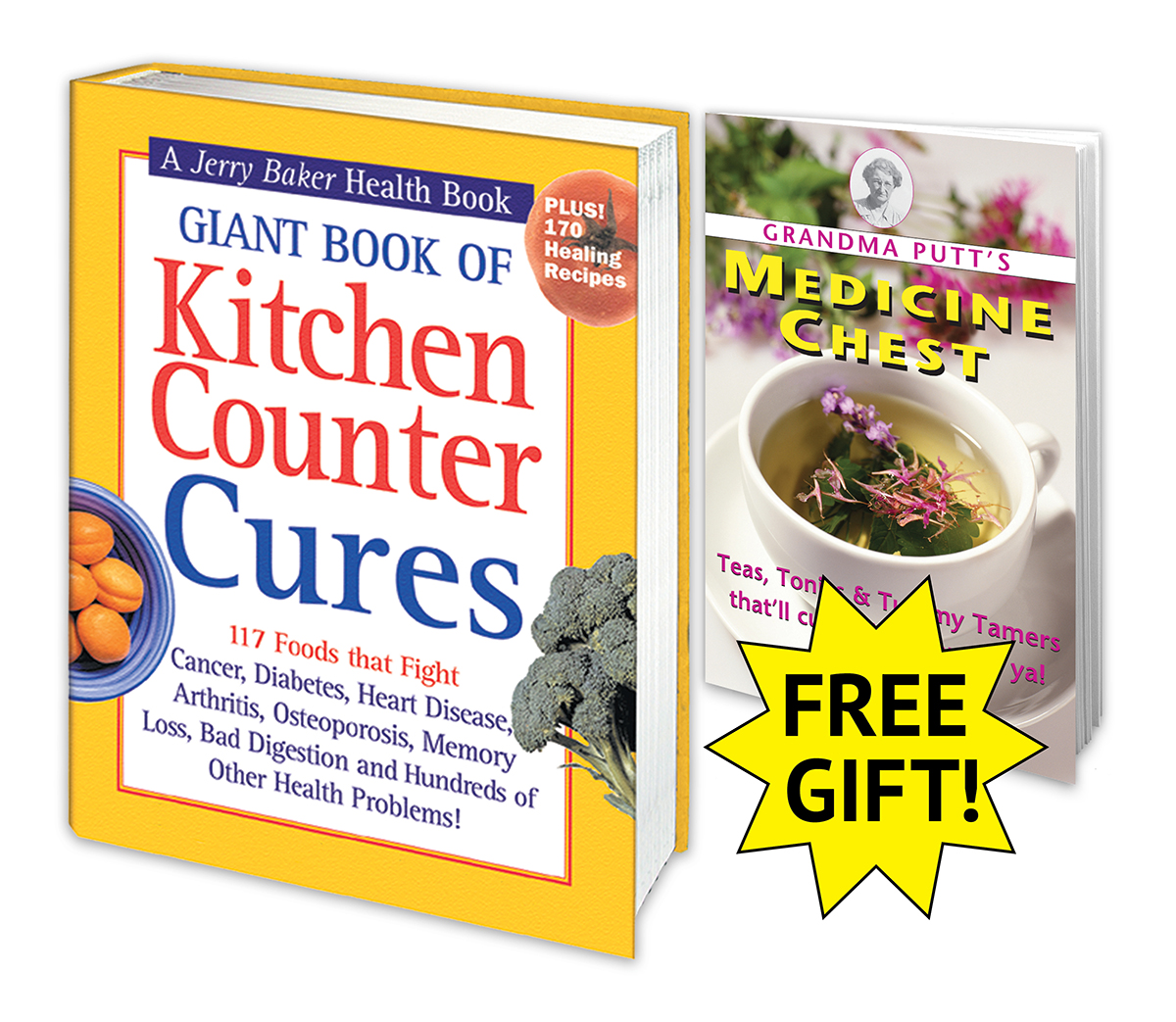 Giant Book of Kitchen Counter Cures