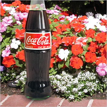 Cola refreshes--both you and your yard