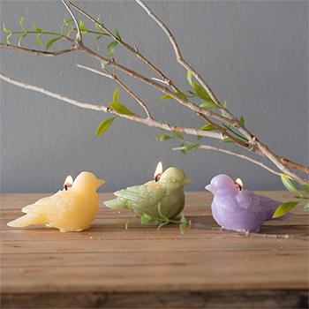 Bird Candle