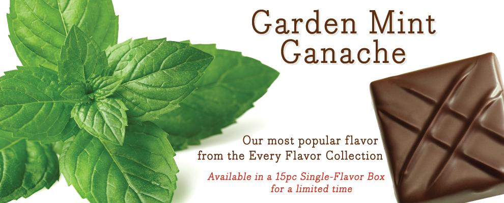 Garden Mint Ganache