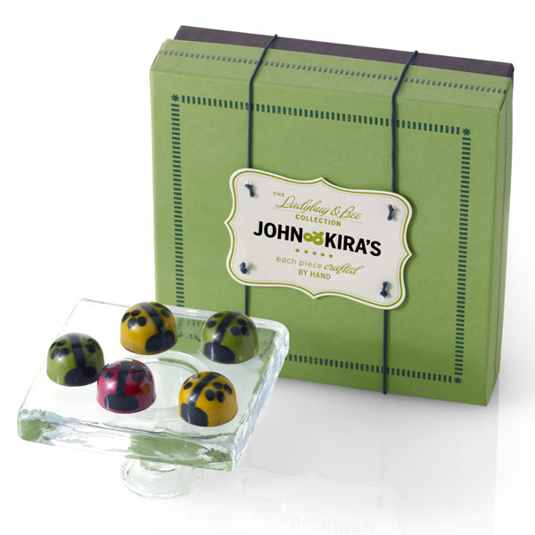 Sixteen assorted ladybugs in a square green boutique box