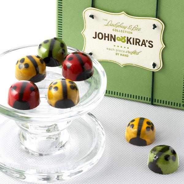 Chocolate Ladybug Medley 9pc