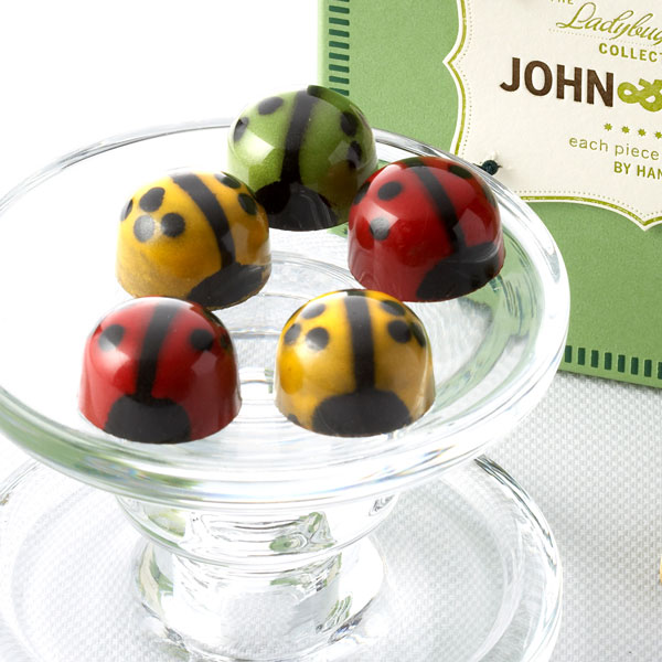 Red Green and Yellow Tricolor Ladybugs