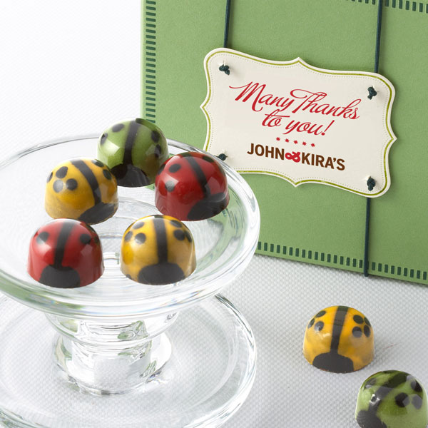 Nine assorted ladybugs in a square green boutique box with Many Thanks gift tag