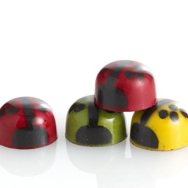 Chocolate Ladybug Medley