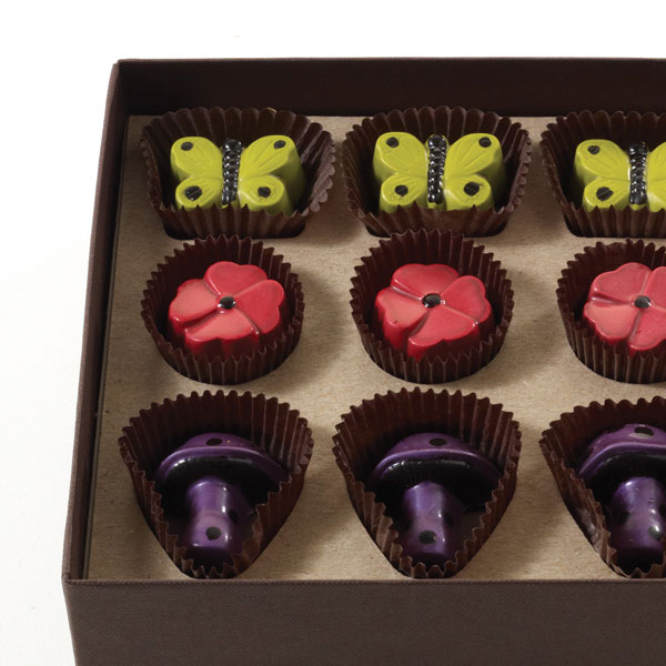 Enchanted Forest Chocolates