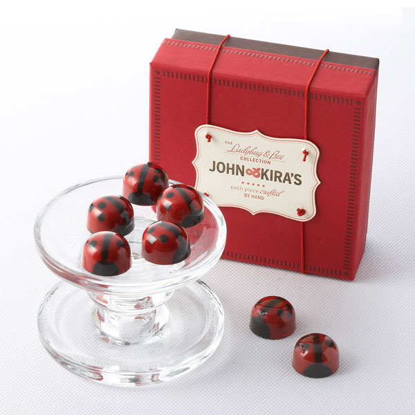 Dark Chocolate ladybugs in a square red boutique box