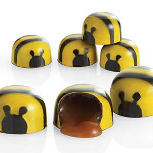 Chocolate Bee Pieces