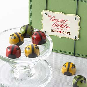 Chocolate Ladybug Medley 9pc - Birthday