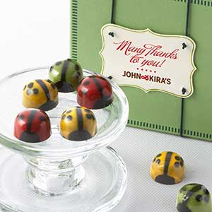 Chocolate Ladybug Medley 9pc - Thank You