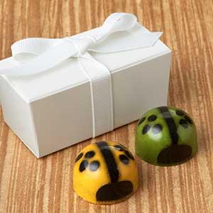 Ladybug + Bee Favors