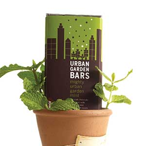 Urban Garden Chocolate Bar - Mighty Mint